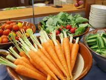 ≪朝食バイキング≫日本一の農業生産高を誇る野菜王国・渥美半島の新鮮な野菜がたっぷり!