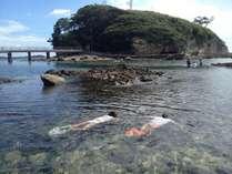 徒歩3分で行ける恵比須島はシュノーケリング天国。たくさんのお魚と一緒に泳ごう!