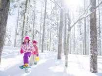 雪の森をスノーシューで