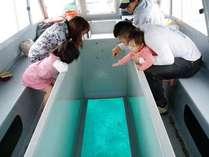 【グラスボート(通年)】カラフルな熱帯魚やサンゴなど、海中の様子がじっくり観察できるボート遊覧