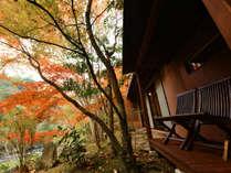天水の紅葉