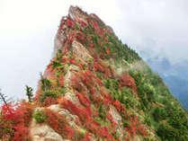 【6月割有り☆】★石鎚登山ロープウェイで一気に標高1300mへ★2食付★