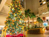 今年も登場!クリスマスツリー