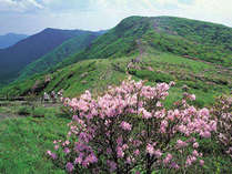 """日本三名山として名高い""""白山""""に建つ国立公園。大自然と触れ合うのに最適な場所です。"""