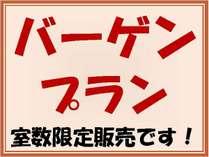 当館人気ナンバー1プラン☆ 室数を限定しての販売です!早いもの勝ちですよ!!