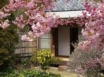 離れの客室(桜)class3