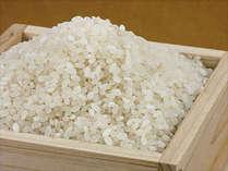 【朝食付】 近江米&村田さん家のお豆腐…自然派朝ごはん召し上がれ♪現金特価