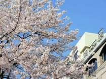 ■外観/春の椿館は桜吹雪がお出迎え♪