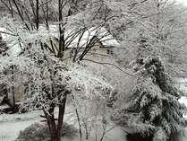 冬の外観。雪が降ると真っ白!音が雪に吸収され、無音の世界が広がります。