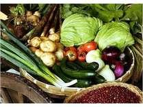 お野菜は直営農場の「ふるさと村」他で手作りした新鮮野菜ばかり