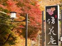 秋の旅 シニアプラン(60歳以上限定)平日のみ!