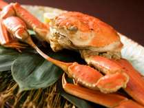蟹の美味しい時期になりました★蟹会席プラン好評受付中です
