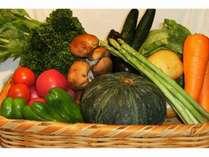 新鮮な夏野菜自家製