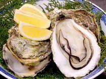 ■岩牡蠣(一例)■ふっくらぷりぷりっ♪濃厚な旨味がたまりません!!
