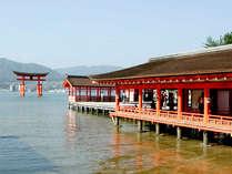 ■厳島神社■世界遺産の厳島神社もぜひ行っていただきたい観光スポットです♪