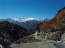 新緑、紅葉が美しい「涼風の別天地」白山スーパー林道。当館からお車で約60分。