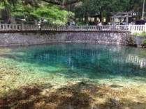 【別府弁天池】ブルーの水が神秘的でと綺麗。日本名水百選に選定されています。