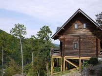 木の温もりが心地よい全面木造のバンガローです