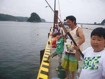 春先~秋口にかけて下田港の桟橋では、サビキで小アジ、小サバが釣れますよ♪