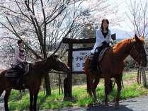 ★お散歩感覚で体験できるエルパティオ乙姫の乗馬★