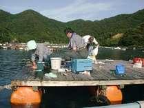 ●筏釣りがやりた~い!!舟盛プラン