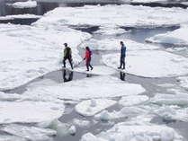 流氷の上を歩けるのは、世界自然遺産知床ならでは!