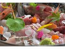 丹後、天然地魚にこだわったさまざまな魚種を少しずつお召し上がりいただきます。