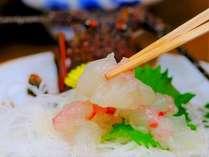 志摩で獲れた伊勢海老は肉厚の身がプリップりで旨味が深い。