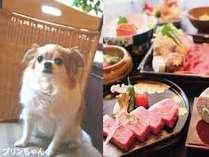 早得30【ペット同室★和牛会席】30日前の予約で500円OFF♪やっぱりお肉!上質な素材でお肉を堪能♪