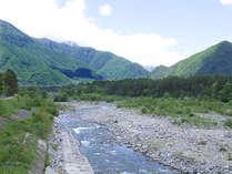 鹿島川。川にはお魚がたくさん住んでいると言われてますよ☆