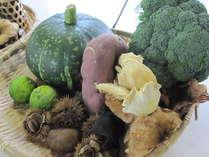 旬の野菜いろいろ盛り合わせ。全て地元産です♪