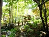 【瑞穂】竹林庭 自然の息吹を感じていただけます。