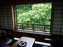 新緑がまばゆい木曽川沿いの特別室
