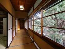 【琥珀】木曽川を望む、総檜造りの特別室。入口より望む中庭。