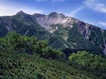 南アルプスは初心者にもオススメのコースも有り、幅広い年齢層に登山を楽しんで頂けます。