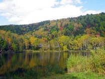*志賀高原の紅葉(木戸池)/大小70ほどある湖沼や湿原を巡るハイキングコースが人気です!