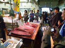 魚市場体感ツアーの様子♪とっても間近で見られます!