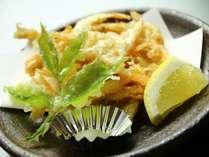 白えびのかき揚げ-キトキト海の幸をその時に一番美味しいものをお出しします