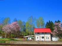 すぐそばをJR宗谷本線が走ります。全客室から汽車を眺められます。