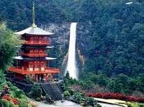 日本一の滝といわれる【那智の滝】。三重の塔と一緒に見ると一枚の絵のようです。
