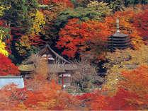 明日香村をたっぷり楽しむ!お得な2連泊「花」プラン<9月~11月>
