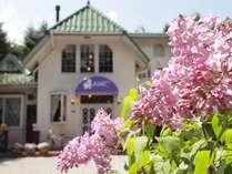 ライラックの花言葉は「思い出」。ライラック軽井沢での滞在が素敵な想い出になりますように!