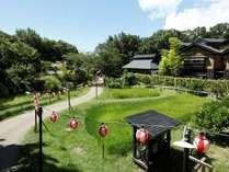 【夏】緑が綺麗な夏のきらの里。夏らしい提灯が昔懐かしい風情を演出♪