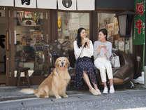【ご散策】湯島庵の飛騨牛にぎりを食べ歩き☆イスのえーごくんはナイスな撮影スポット!