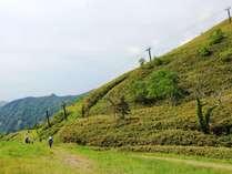 苗場観光協会主催「山たけのこウィーク」