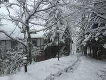 冬のクロイツェル。しんしんと雪の降る中暖炉で寛ぎませんか?
