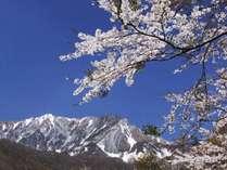 春うららか(^^♪温泉旅行★プチプレゼント付★4月~5月の特別謝恩プラン