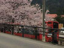 *春の湯野上温泉駅