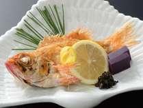 【1日5組★期間限定】お客様感謝月間!高級魚を楽しむ♪「のどぐろの塩焼き」満喫プラン