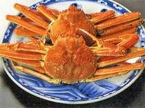 蟹(ズワイガニの素材のイメージです。)